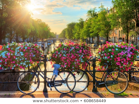 Amsterdam canal and flowers Stock photo © dmitry_rukhlenko