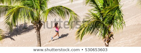 Fitness woman running training on tropical beach in between palm trees. View from high angle, hero s Stock photo © Maridav