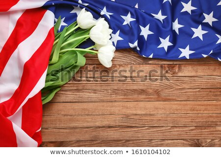 Background of flowers as USA flag Stock photo © boroda