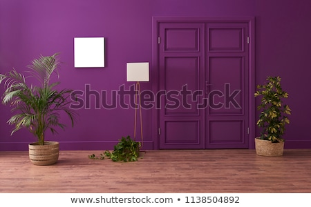 Brown Door in a Painted Wall Stock photo © rhamm