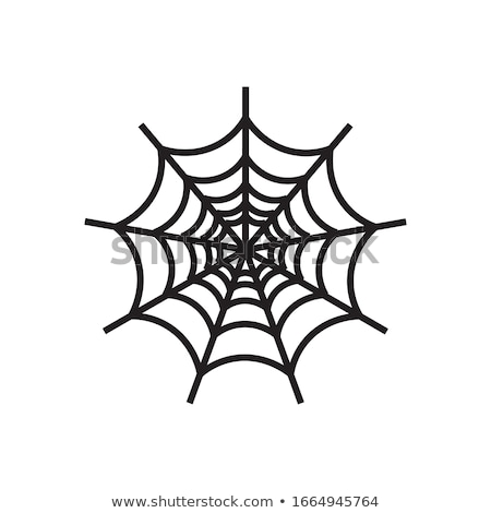 Abstract Spider Web Icon Stock photo © cidepix