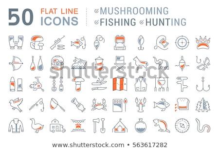 Vissen ingesteld eenvoudige vakantie iconen Stockfoto © MKucova
