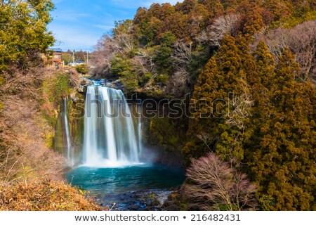 Brillante cascada paisaje Japón agua paisaje Foto stock © shihina