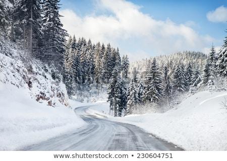 ストックフォト: 道路 · 山 · 白 · 雪 · 車 · 通り