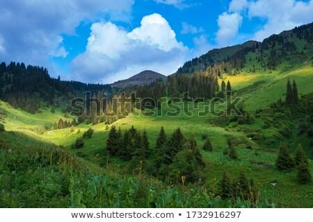 Казахстан гор живописный природного пейзаж зеленый Сток-фото © adam121