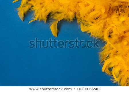 Beads and yellow feather Stock photo © kash76