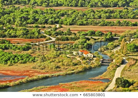 Strophylia wetlands Stock photo © igabriela