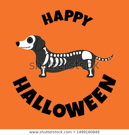 cartoon spooky skeleton Stock photo © lineartestpilot