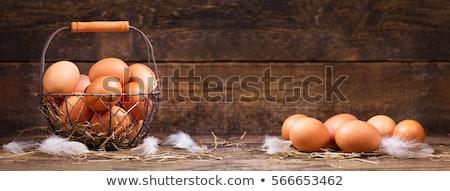 Fresco ovos verão aldeia comida ovo Foto stock © Andriy-Solovyov