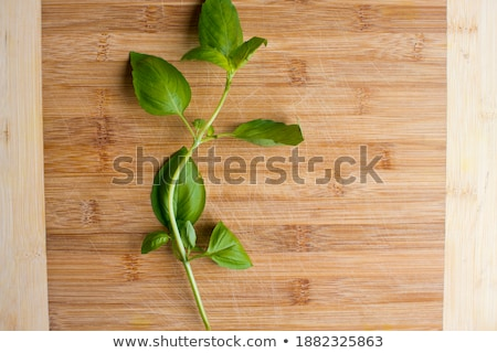 Isolated fresh plain salad garnished with mint Stock photo © ozgur