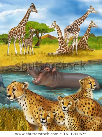 Giraffe family by the water Stock photo © Sportactive