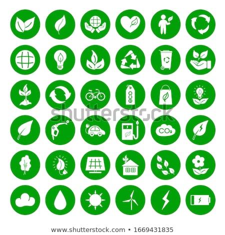ストックフォト: 保護された · 緑 · ベクトル · アイコン · デザイン · ロック
