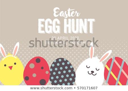 Kuikens bunny eieren cute permanente rond Stockfoto © x7vector