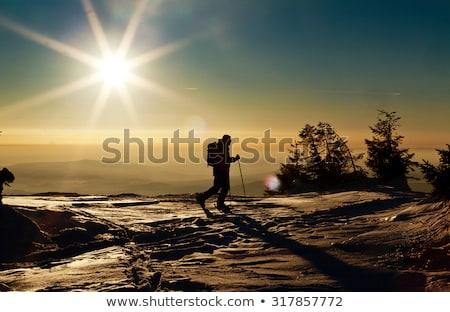 лыжник силуэта закат иллюстрация спорт снега Сток-фото © adrenalina