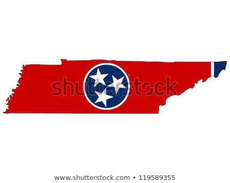 USA Tennessee pavillon blanche 3d illustration texture Photo stock © tussik