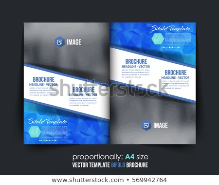 брошюра шаблон дизайна журнала охватывать Сток-фото © SArts