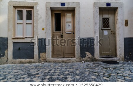 Wooden door of house, architecture background, building home real estate backdrop Stock photo © Andrei_