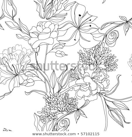 ヴィンテージ · バラ · 花柄 · ベクトル · 白 · 花 - ストックフォト © yopixart