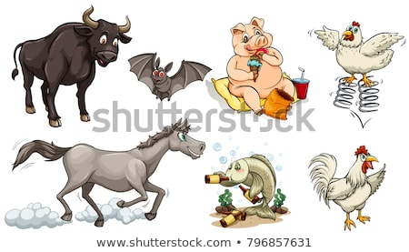 Different types of animals doing different things Stock photo © bluering