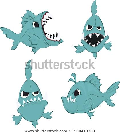 Zangado pequeno piranha desenho animado ilustração olhando Foto stock © cthoman