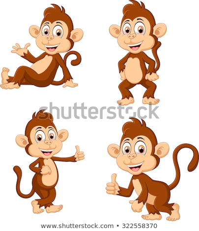 Monkeys in many actions Stock photo © colematt