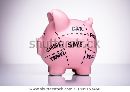 Piggy Bank Divided Into Saving Categories Stock photo © AndreyPopov