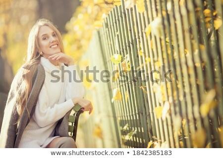 Schoonheid natuurlijke kijken portret aangenaam naar Stockfoto © vkstudio