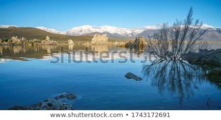 tó · magas · só · tartalom · égbolt · nap - stock fotó © disorderly