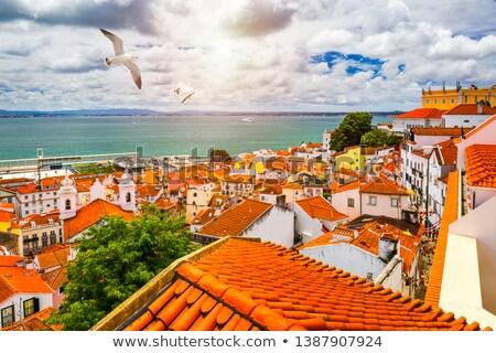 kilátás · Lisszabon · templom · folyó · város · tájkép - stock fotó © t3mujin