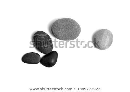 Siyah çakıl taşlar vektör eps10 örnek Stok fotoğraf © ikopylov