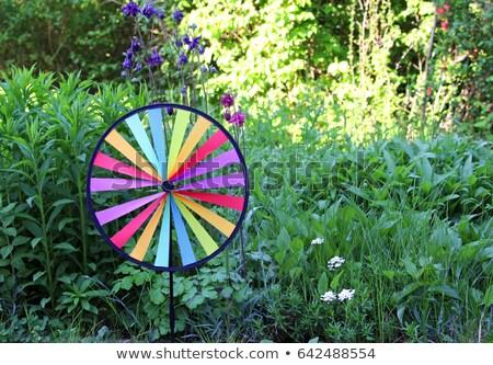 Stock photo: Colourful wind wheel