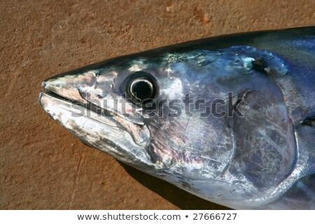 peixe · cabeça · cozinhar · fresco · balança - foto stock © lunamarina