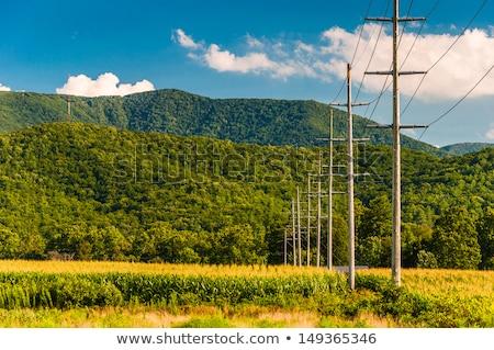 asfalto · carretera · colinas · Irlanda · viaje · viaje - foto stock © elwynn