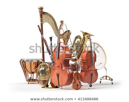 wind musical instrument Stock photo © mayboro1964