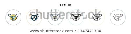Lemur cartoon Stock photo © adrenalina