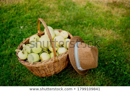 Fresh Green Apples on the Table with Brown Hat Stock photo © ozgur