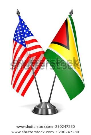 USA Guyana miniatűr zászlók izolált fehér Stock fotó © tashatuvango