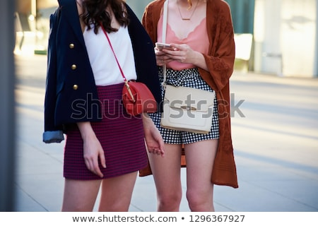 Vrouw minirok achteraanzicht modieus Stockfoto © iofoto