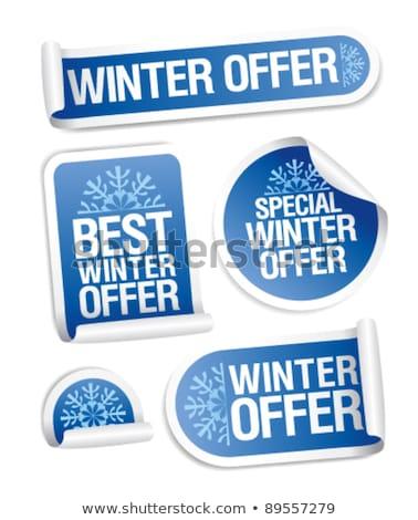 зима предлагать синий вектор икона кнопки интернет Сток-фото © rizwanali3d