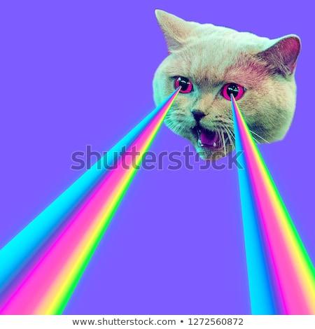 психоделический пунктирный красочный аннотация иллюстрация вектора Сток-фото © derocz