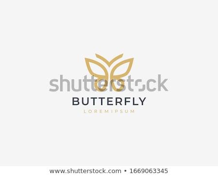 ベクトル · 蝶 · ロゴ · ロゴデザイン · パターン · 蝶 - ストックフォト © ggs
