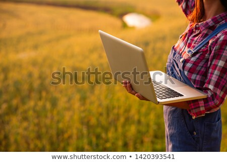 Female farmer using tablet computer in wheat crop field Stock photo © stevanovicigor