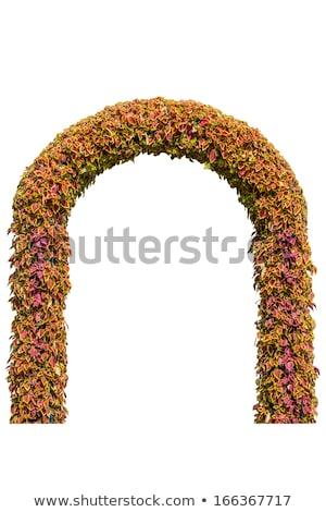 арки цветы вход парка аннотация пейзаж Сток-фото © galitskaya
