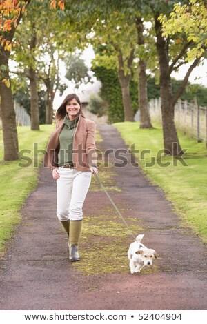 женщину · собака · ходьбы · улице · осень - Сток-фото © monkey_business