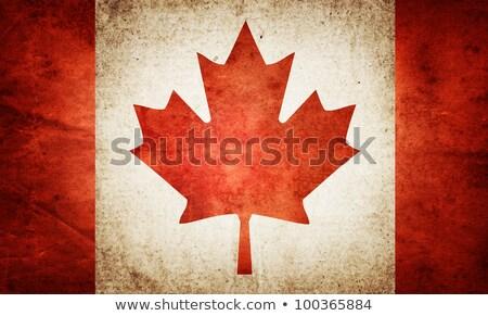 グランジ カナダ フラグ 古い ヴィンテージ グランジテクスチャ ストックフォト © HypnoCreative