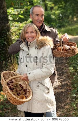 Pár gyűlés gombák kosár erdő fej Stock fotó © photography33