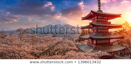 Pagoda Temple and Fuji Stock photo © dayzeren