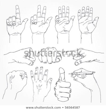 count 3 - hand and arm of bones Stock photo © pterwort
