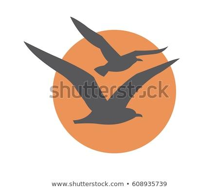 Vector icon seagull Stock photo © zzve