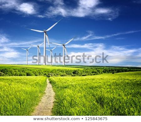 Szélturbinák felhős kék ég mezők fű erő Stock fotó © tannjuska